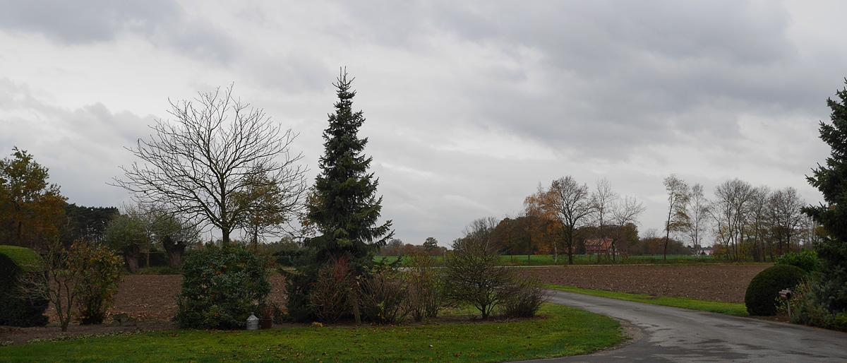 12tel Blick November 15
