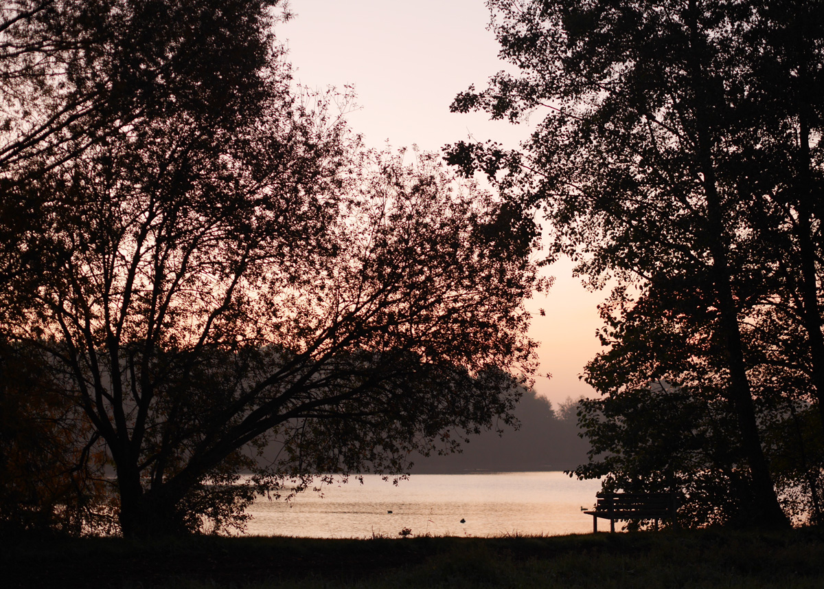 Morgens am See_1