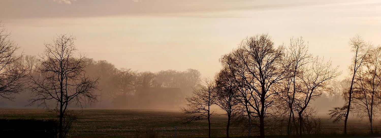 Hof im Nebel