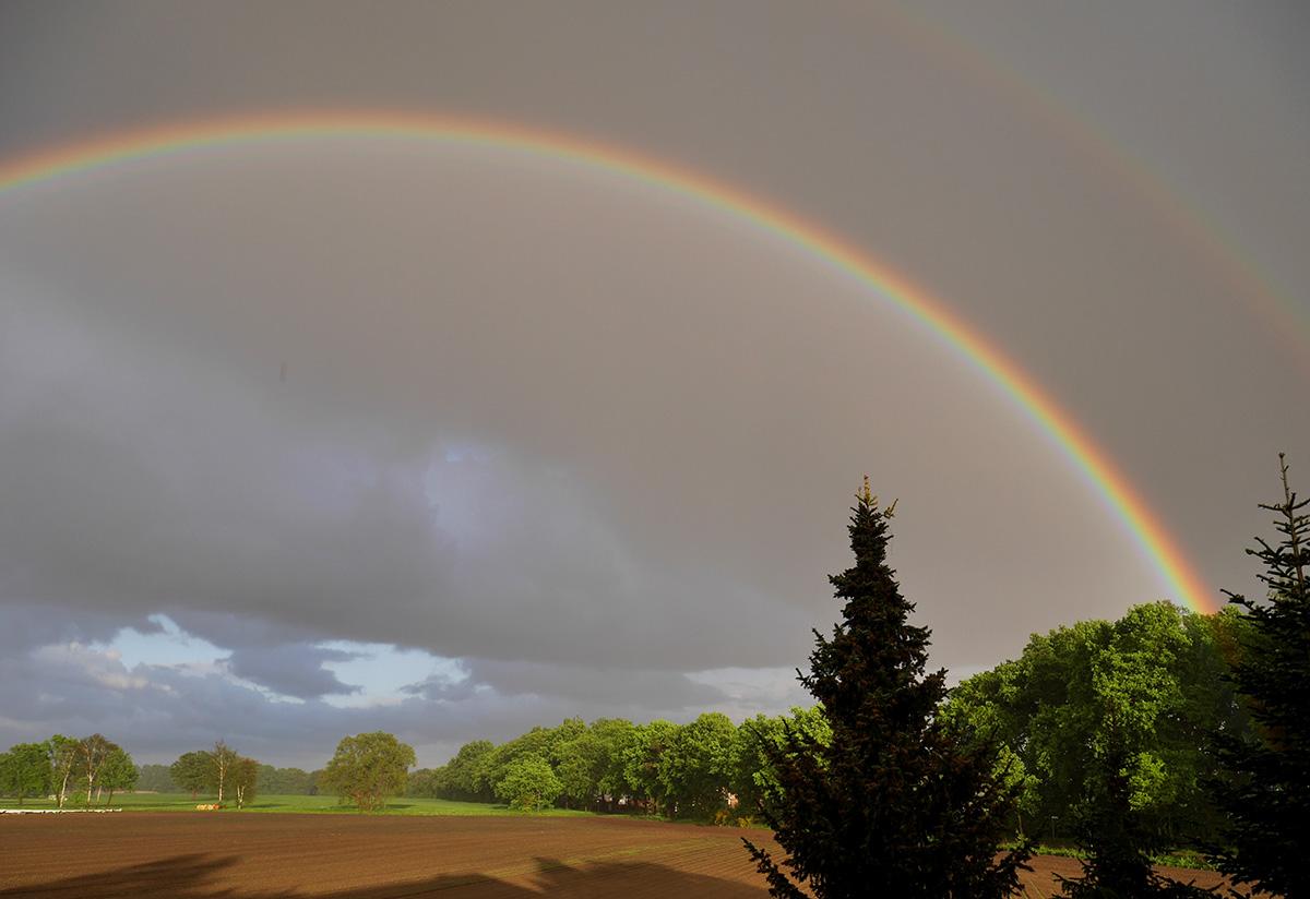 Am Ende des Regenbogens_1