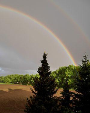 Am Ende des Regenbogens_4
