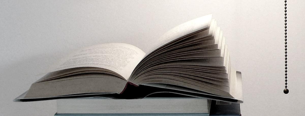 Leitfaden der Buchbesprechung