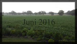 06_Juni 2016