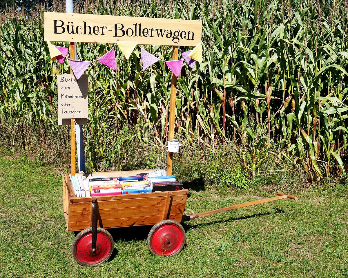 Bücher-Bollerwagen im August_1