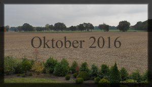 10_oktober
