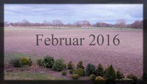02_februar-16