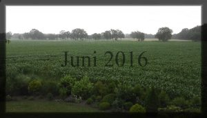 06_juni-2016
